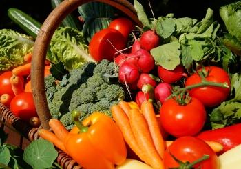 Biopotraviny ve Filipovce